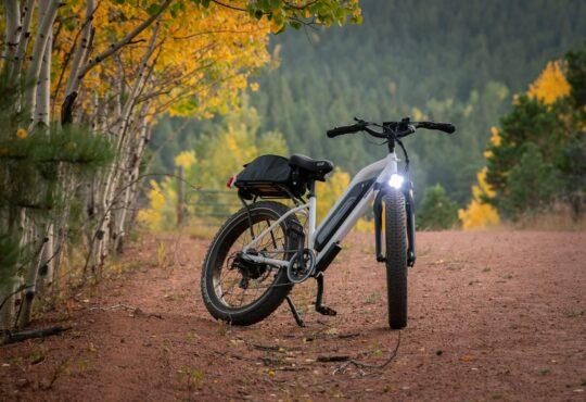 Elektrische fietsen: niet meer weg te denken